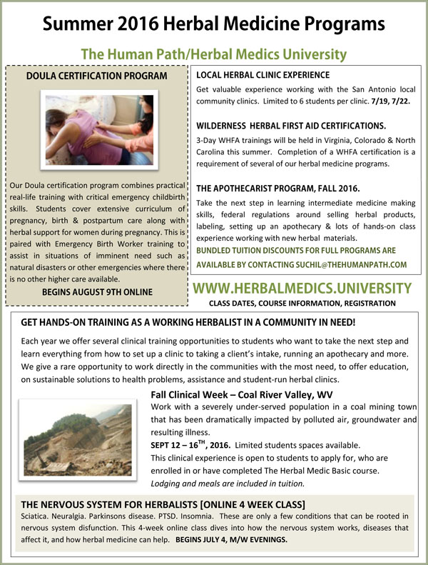 Herbal Medics Academy Summer Newsletter