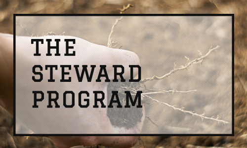 The Steward Program