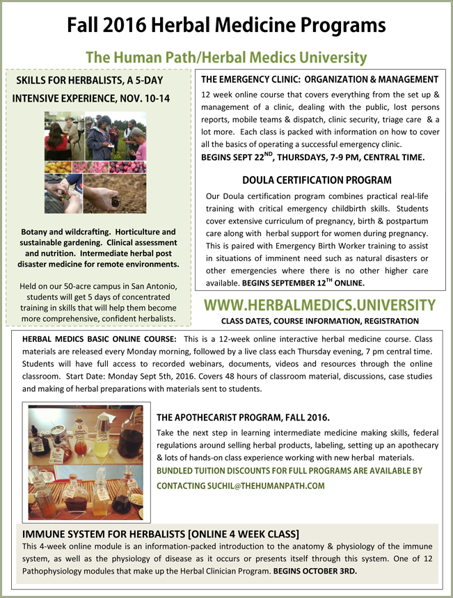 click here to see the full sized newsletter